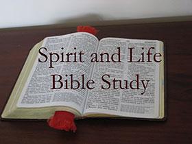 Spirit-and-Life-Bible-Study-logo